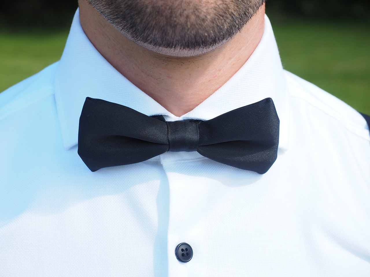 Fliege-Anzug-heiraten