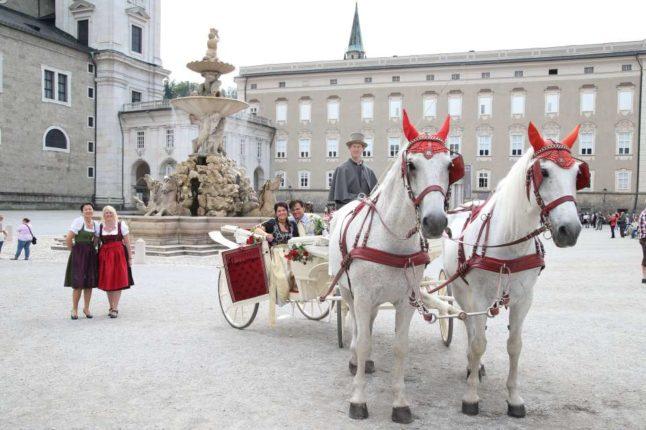 Weiße Hochzeitskutsche m. weißen Schimmeln